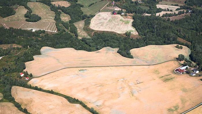 Tørkerammede jorder i Telemark i begynnelsen av august i fjor. Mange norske bønder ble sterkt berørt av tørken og de høye temperaturene. Foto: Berit Roald / NTB scanpix